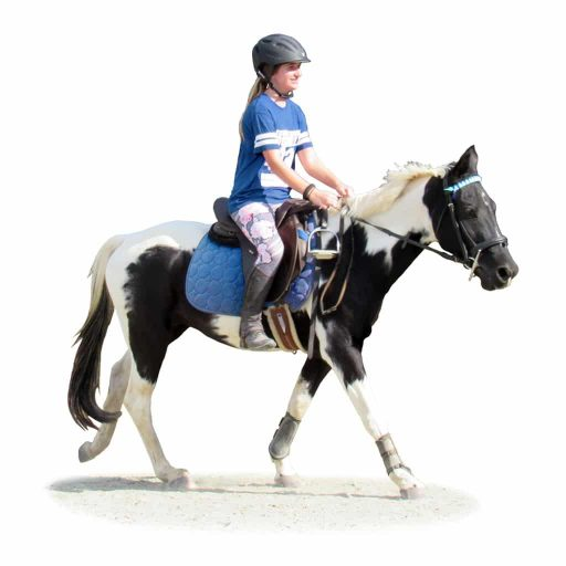 Blue Level student riding at the canter