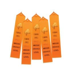 5 ribbons for Orange HS
