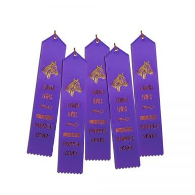 5 ribbons for Purple HS