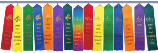 all 15 Learning Levels ribbons