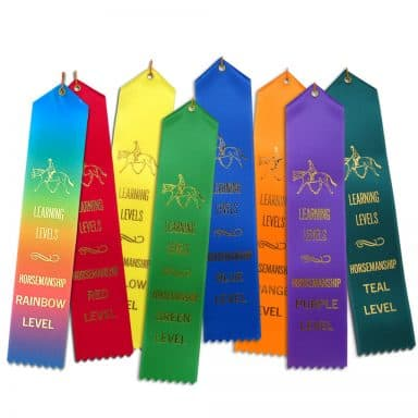 8 horsemanship point-top flat ribbons
