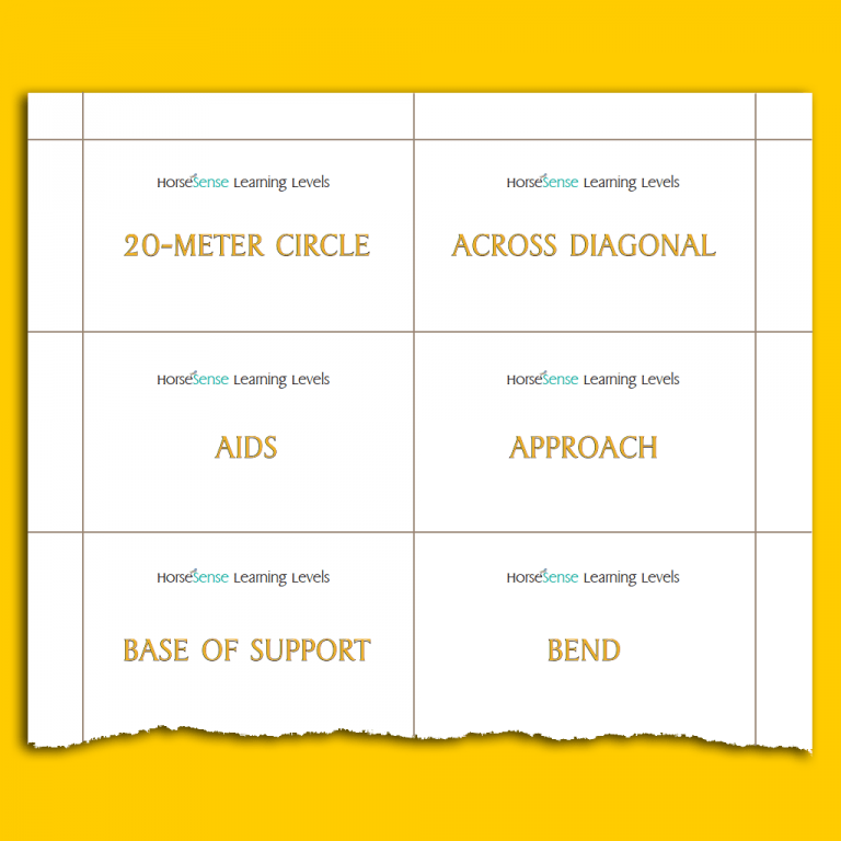 Level Up flashcards - Yellow HM - sample page