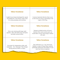 sample page with Yellow HS definitions