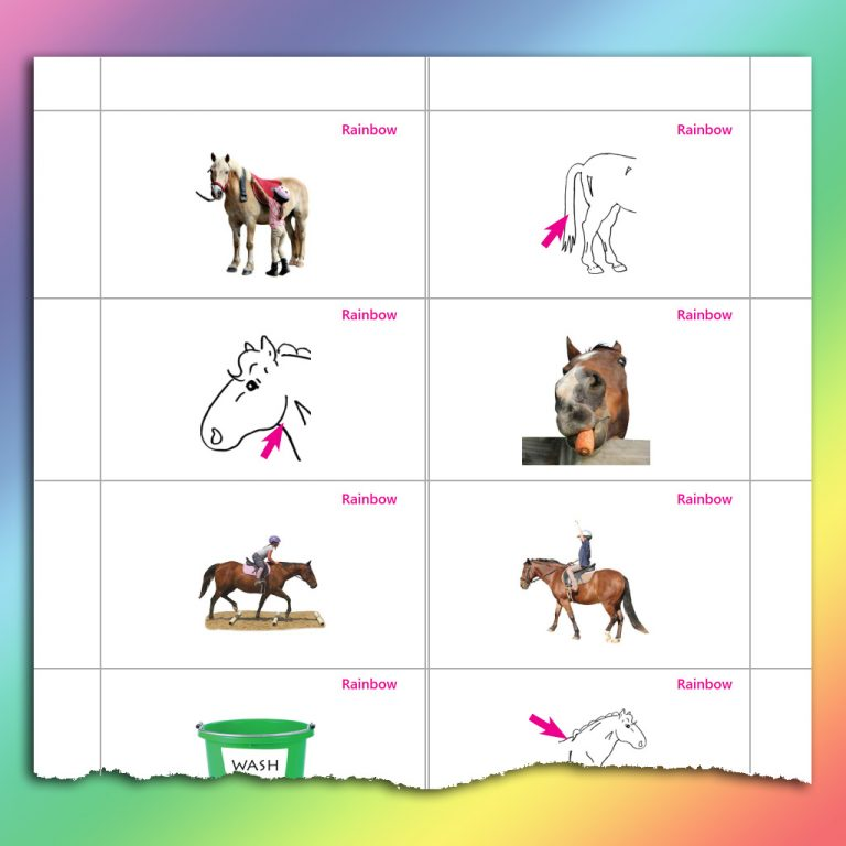 sample image cards for Rainbow Level
