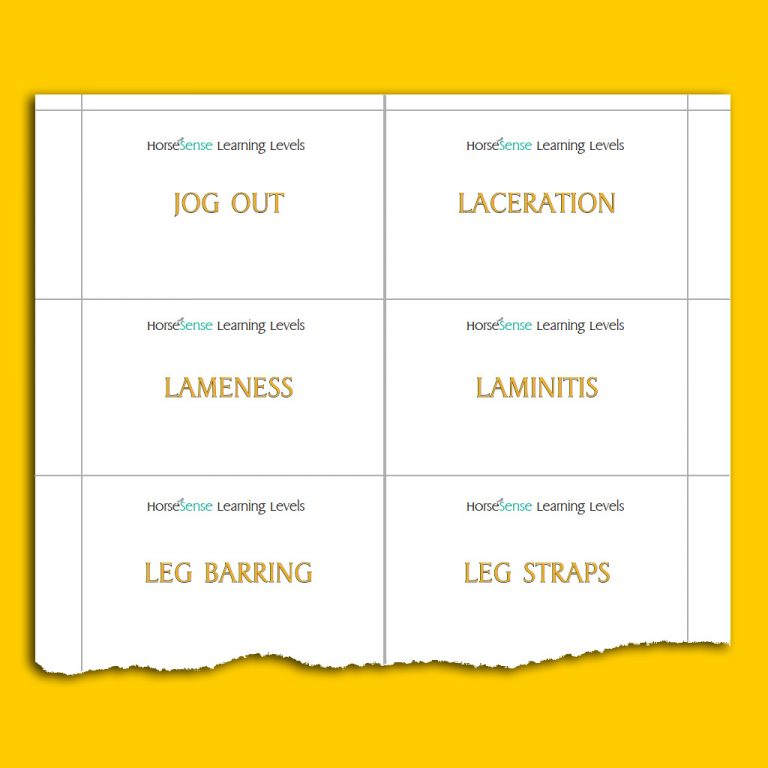 sample page with Yellow HS flashcards