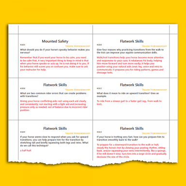 Yellow HM Level Up Cards sample page