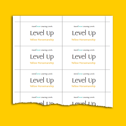 Yellow HM Level Up Cards back sample page