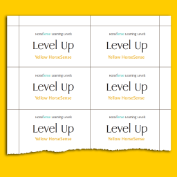Yellow HS Level Up Cards back sample page