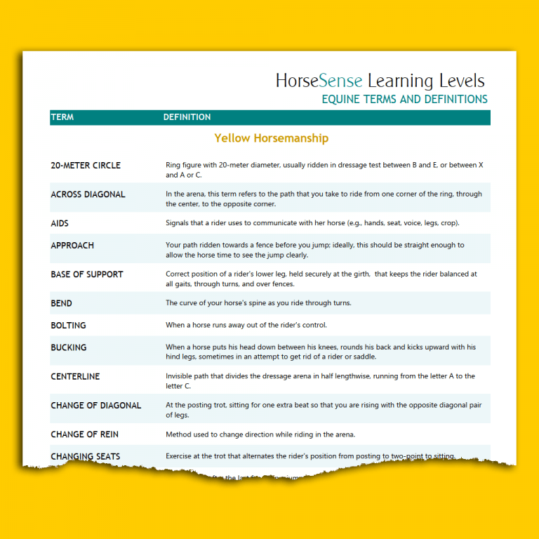 sample page of Yellow HM terms and definitions