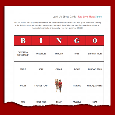 sample BINGO card for Red HS equine terminology