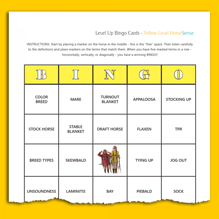 sample BINGO card for Yellow HS equine terminology