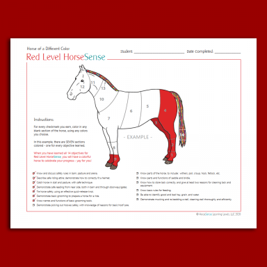 tracking certificate with partially colored horse drawing