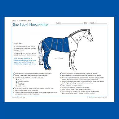 example page from Blue HS Horse of a Different Color