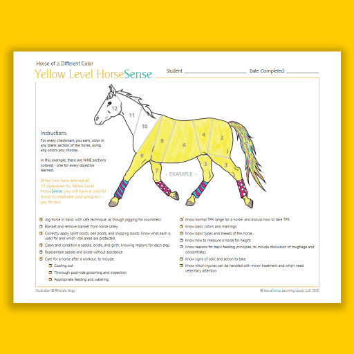 Horse of a Different Color certificate - Yellow HS