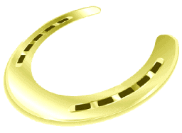 Gold horseshoe hidden in every study guide