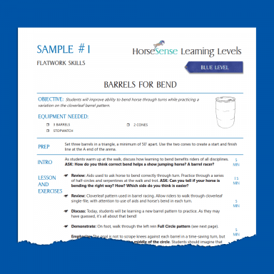 sample page from blue level lesson plans