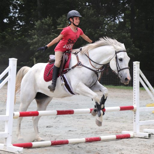 student jumping horse without stirrups or reins for No-stirrup November