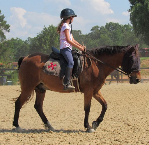 young student riding pony at walk druing no-stirrup month