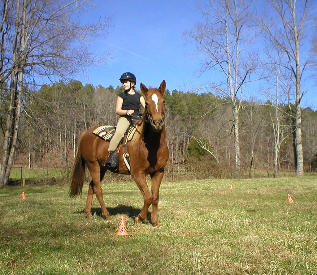 student learning Red Level Horsemanship in open field with cones
