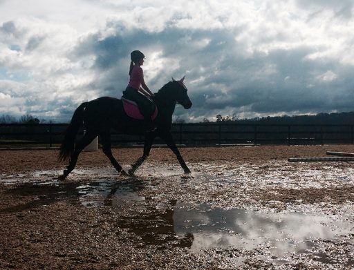 student riding horse through puddles in arena