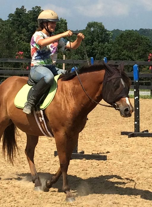 instructor teaching school horse to tolerate rider mistakes