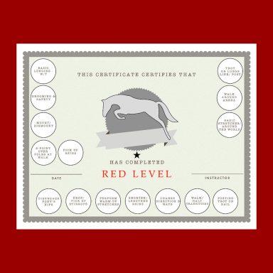 Red Horsemanship generic certificate with sticker fields