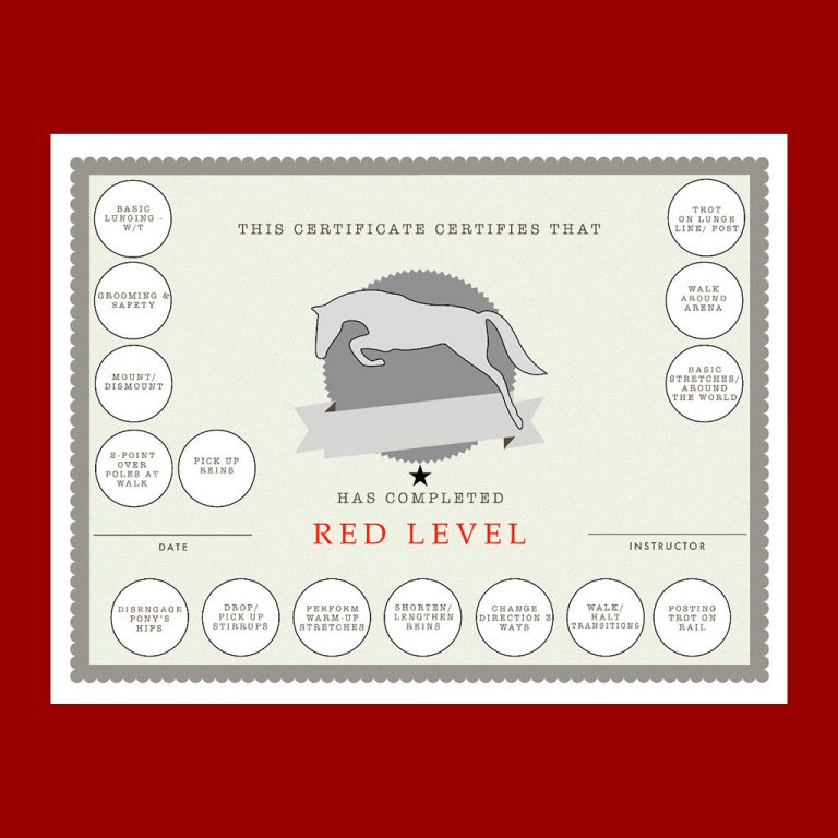 Red Horsemanship generic certificate with sticker fields