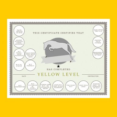 Yellow Level HM certificate with sticker fields