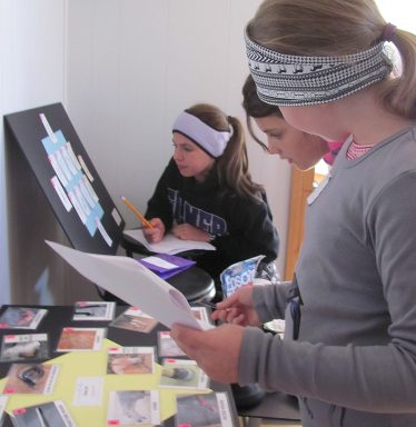 Students play quiz games to test study guide equine knowledge.