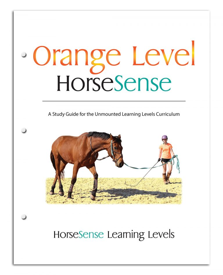 Orange HS Study Guide cover page