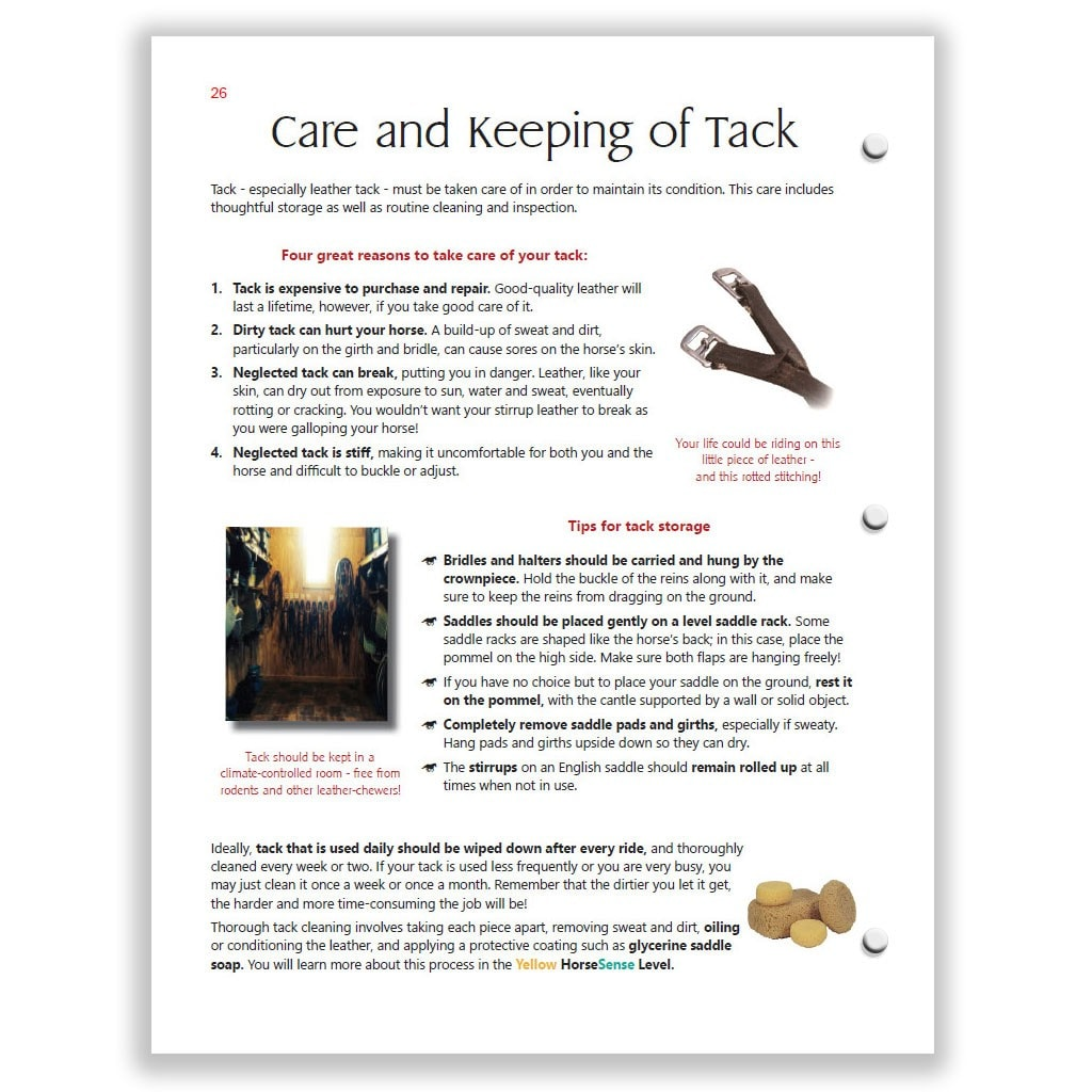 Care and Keeping of Tack page of Red HorseSense Study Guide covers cleaning and storage.