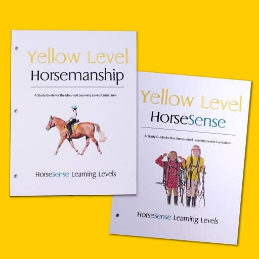 Yellow Level Study Guides