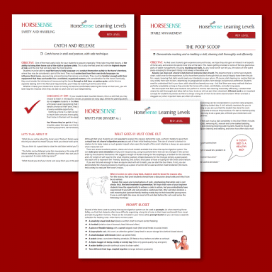 three sample pages of Red Level HorseSense unmounted lessons