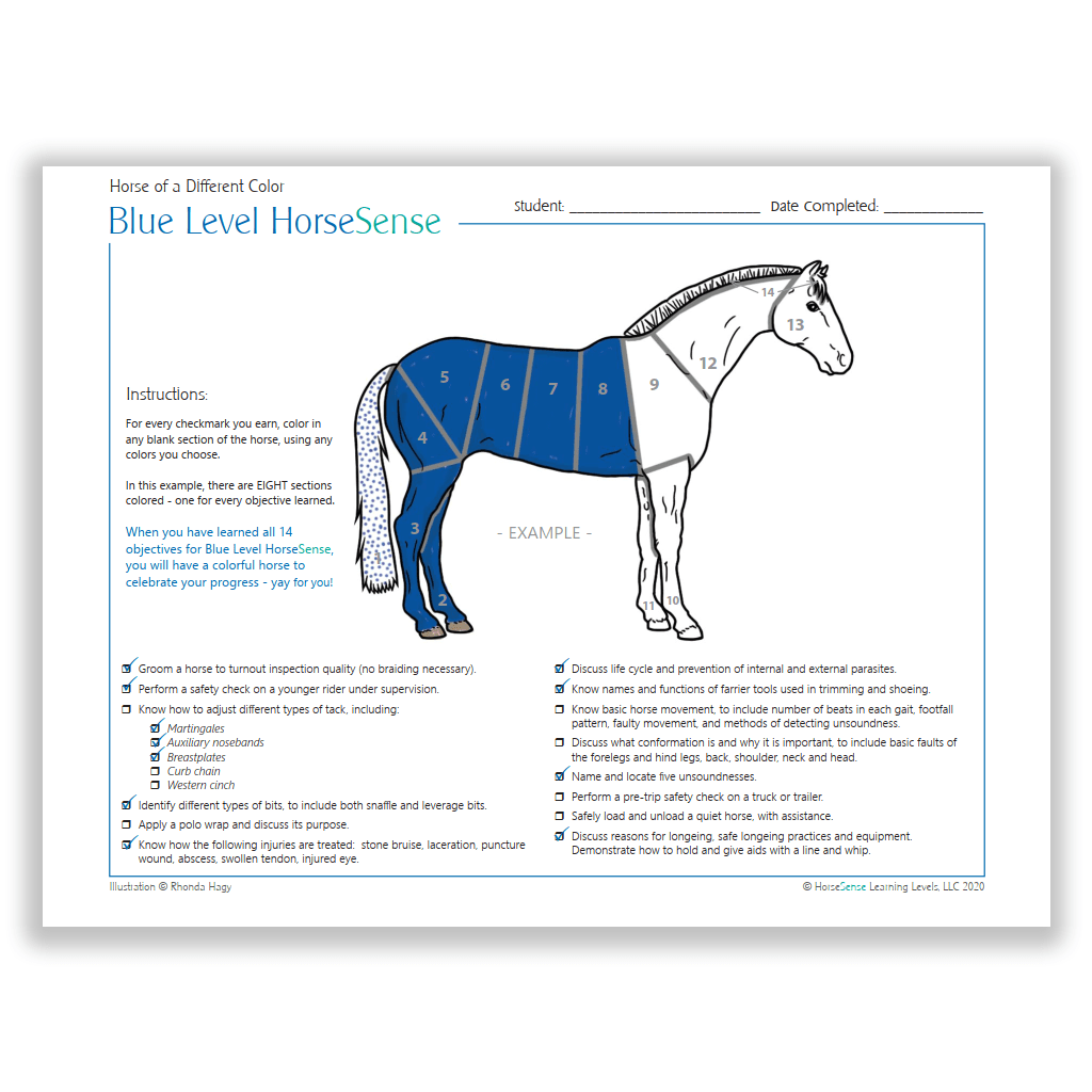 instructions page from Blue HS Horse of a Different Color