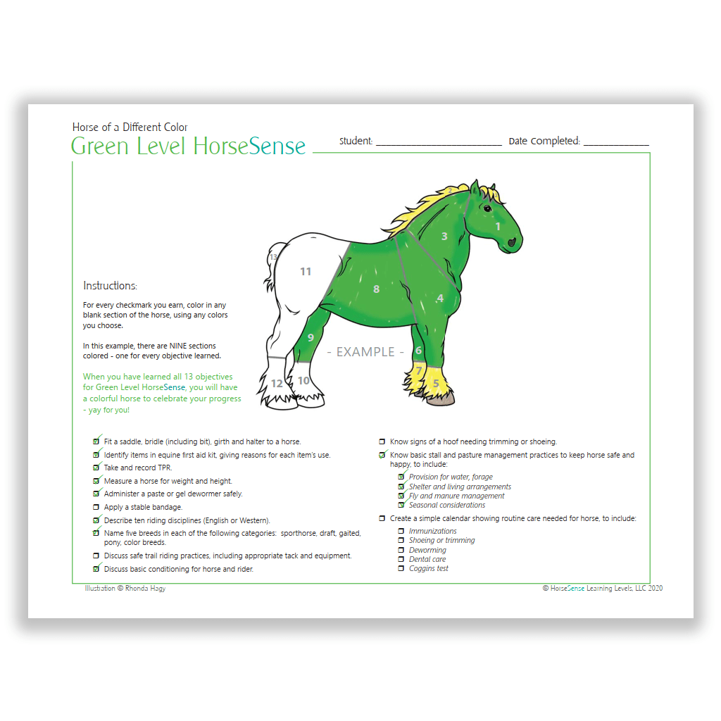 Horse of a Different Color certificate - Green HS - info page