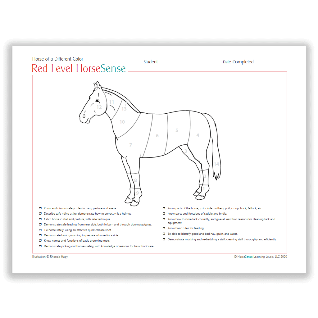Horse of a Different Color certificate - coloring page