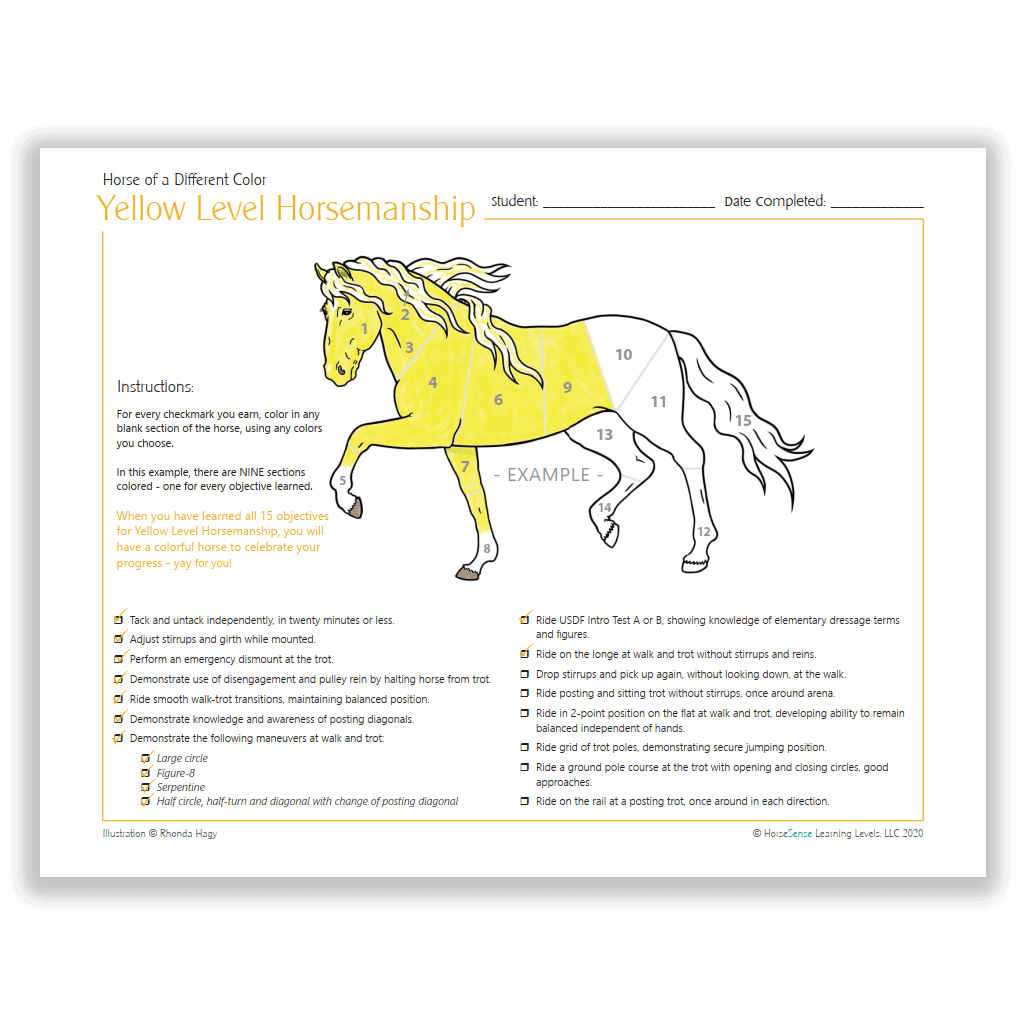 Horse of a Different Color certificate - info page