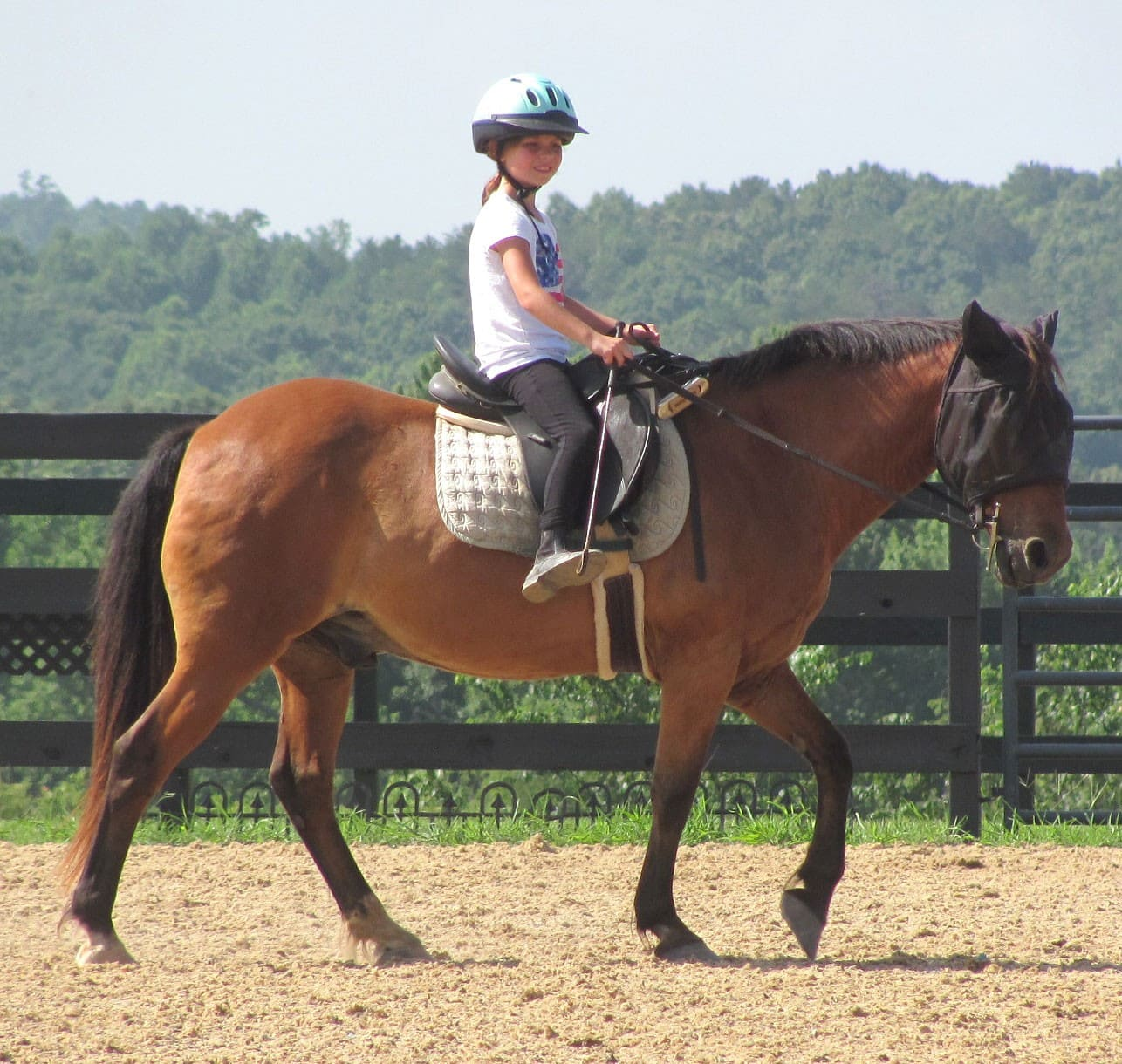 walk lesson for student and pony with no stirrups