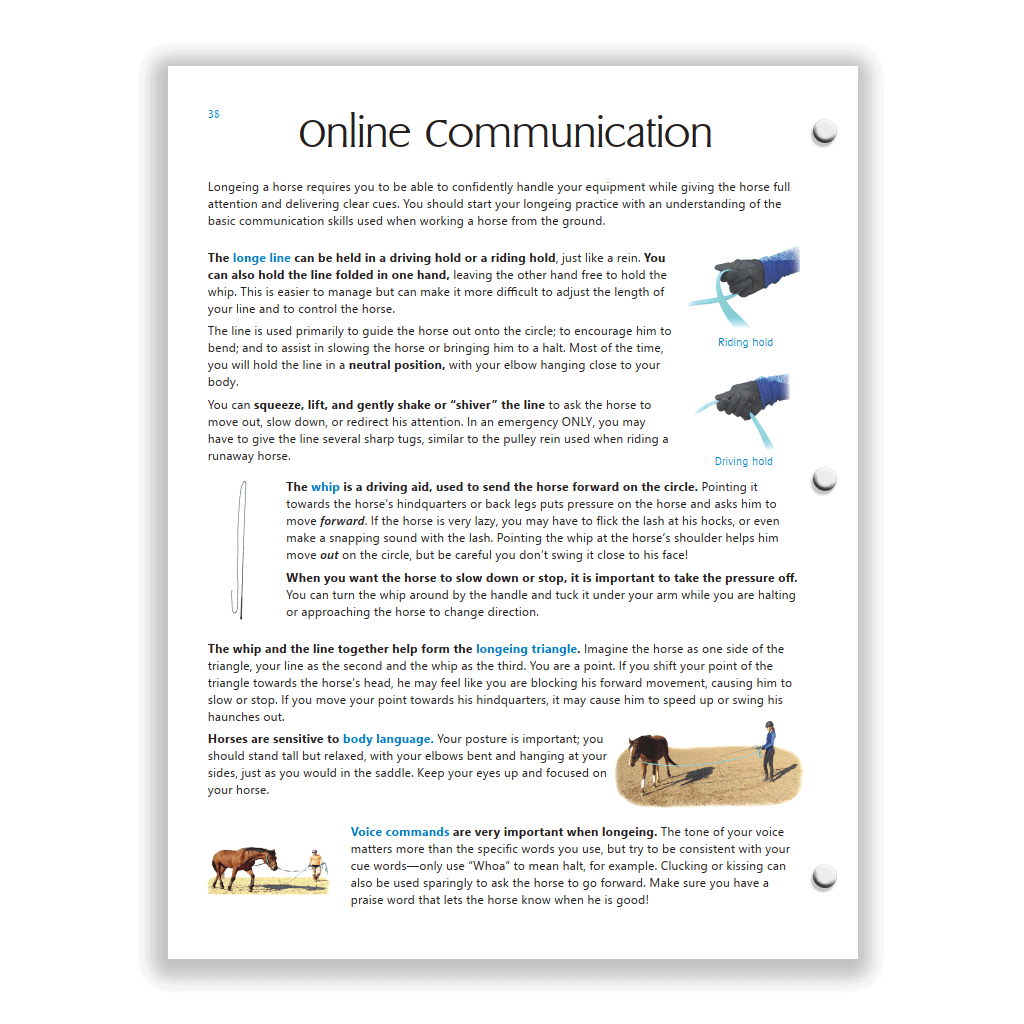 Blue HS study guide - longeing page