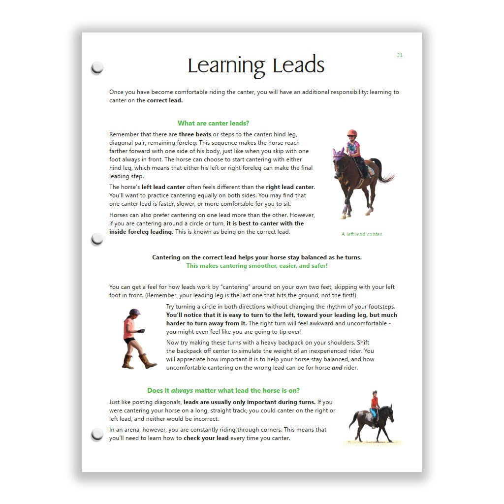 This Green Horsemanship study guide page teaches canter leads