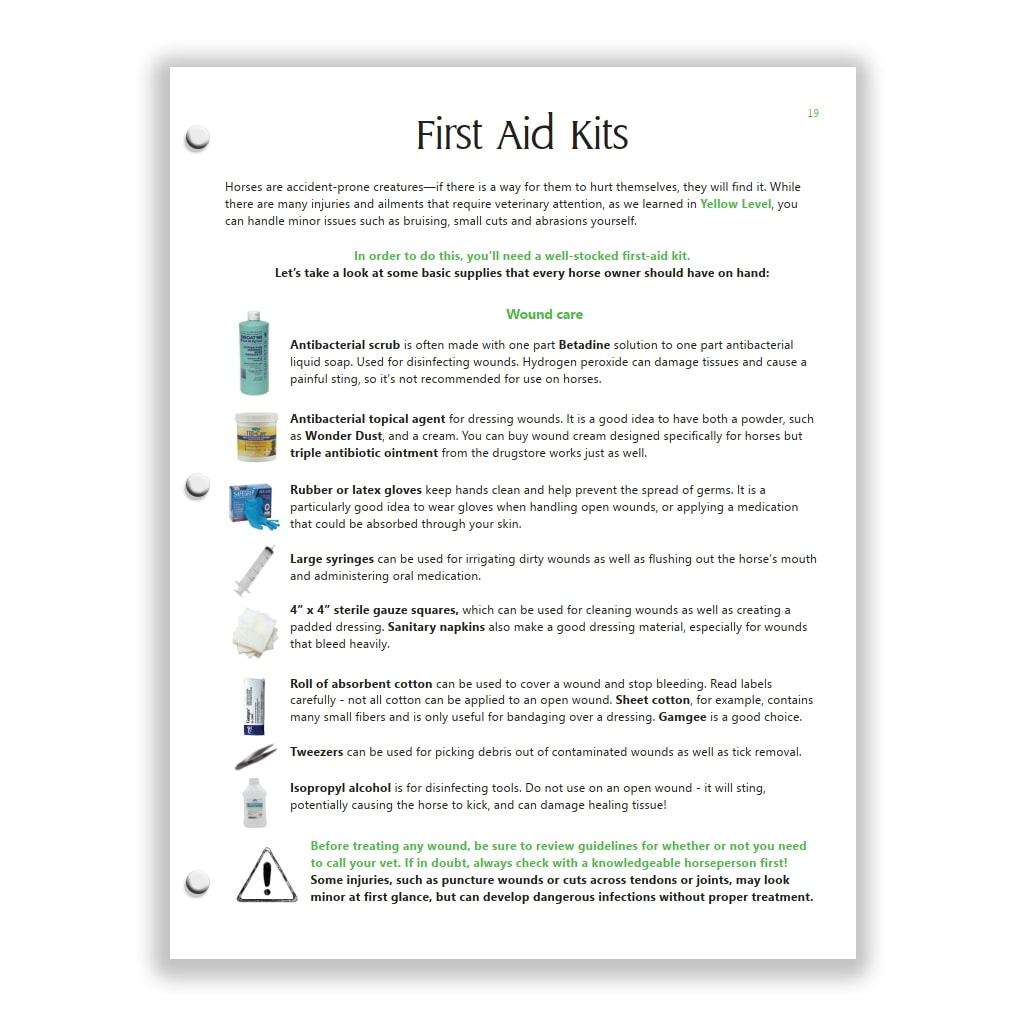 first aid kit page from Green HorseSense Study Guide