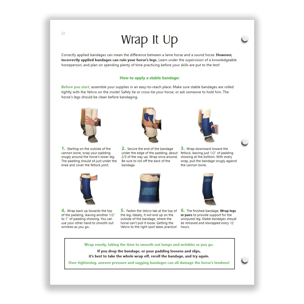 bandaging page from Green HorseSense Study Guide