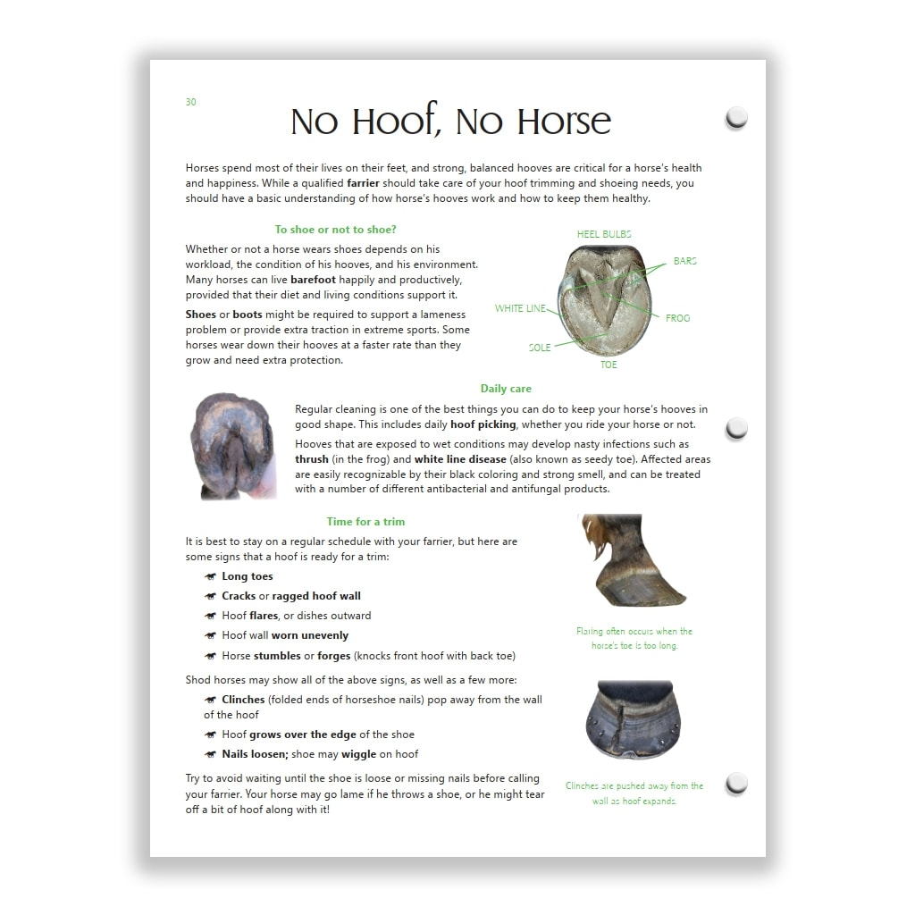 hoof care page from Green HorseSense Study Guide