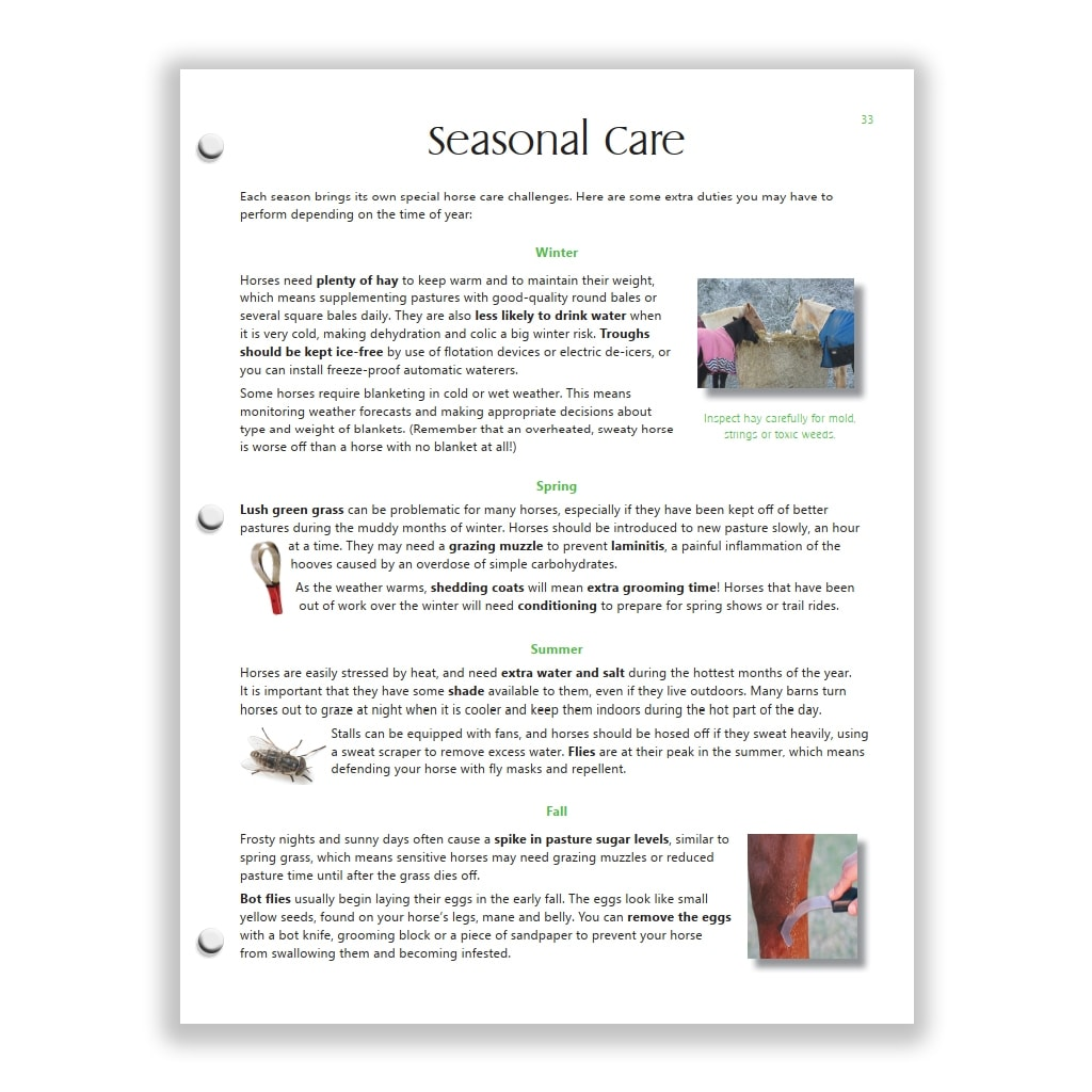 seasonal care page from Green HorseSense Study Guide