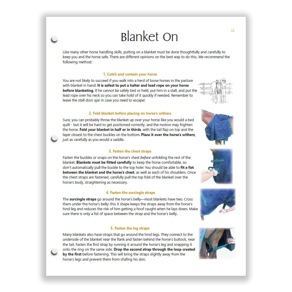 blanket on page from Yellow HS study guide