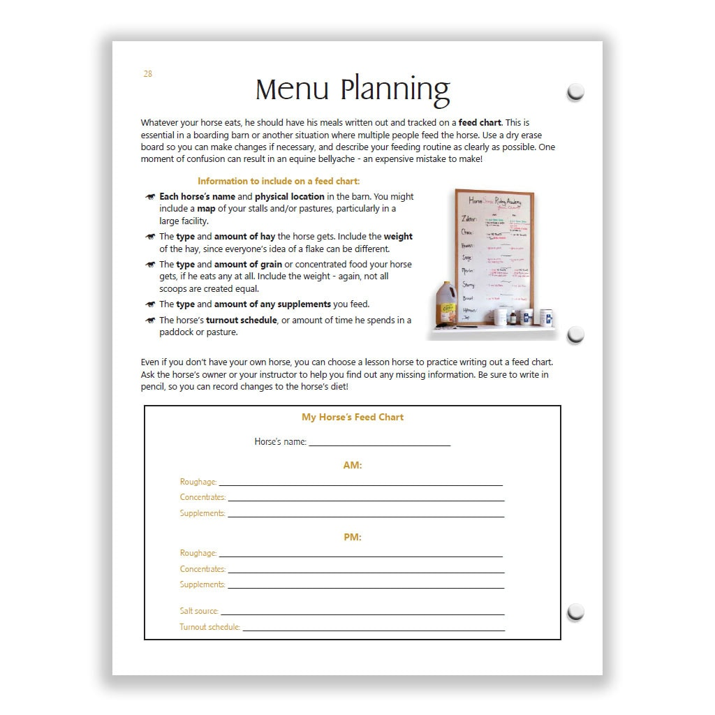 menu planning page from Yellow HS study guide