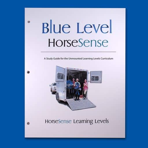 Blue HS Study Guide cover